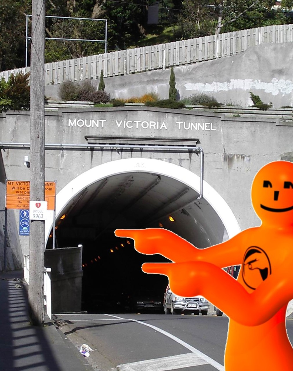 Orange Guy Mt Vic